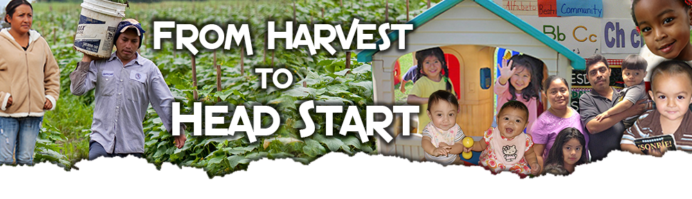 From Harvest to Head Start